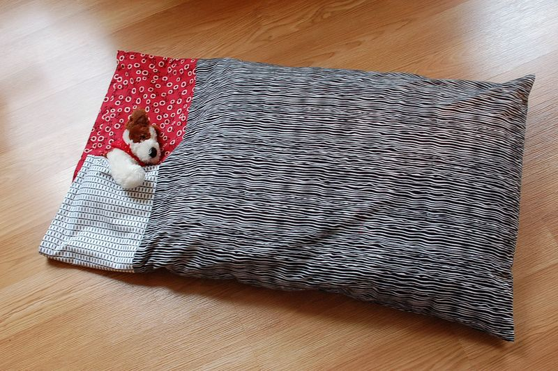 pillow pocket with friend